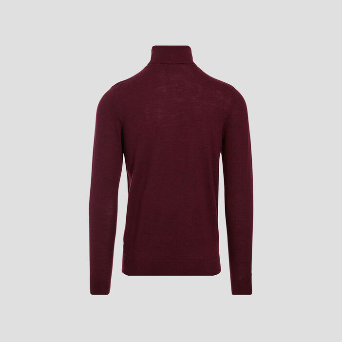 Pull manches longues prune homme